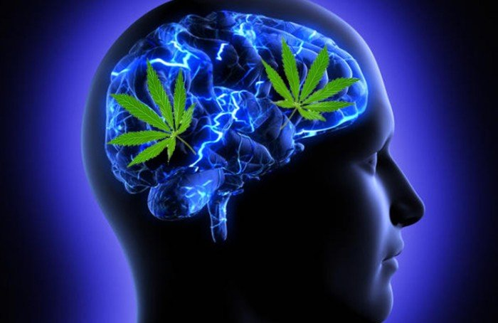 El alcohol y sus efectos a largo plazo de la marihuanas